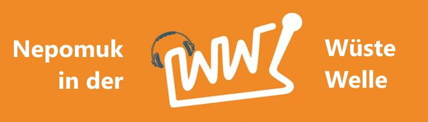 Interview at Wüste Welle